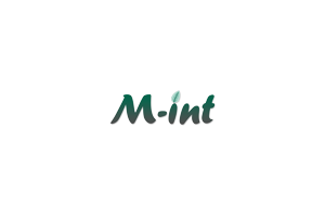 M-int Webdesign & Computerhulp